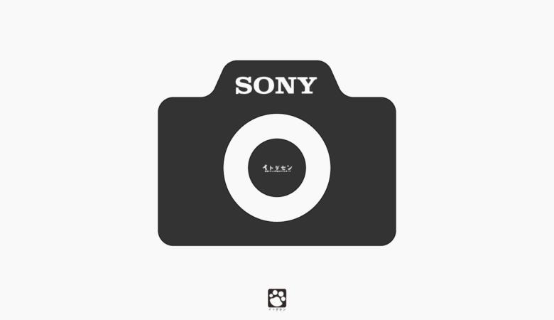 ソニー(SONY)のカメラ!おすすめを紹介【2020年】